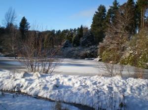 The river at Kellas